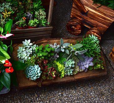 De tuin opknappen doe je zo 4 slimme tips