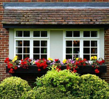 Budgetproof tuinieren- zo bespaar je extra geld in de tuin!