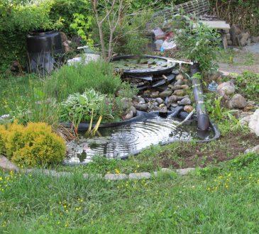 Hoe bouw je een waterval in je tuin