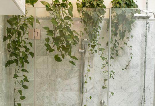 3 redenen om te kiezen voor een douchewand in de badkamer